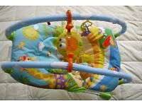 Tiny Love Gymini baby bouncer in excellent condition (in box)