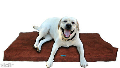 Shredded Memory Foam Orthopedic Dog bed for Large Breed Dogs