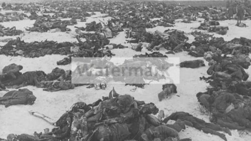 WWII photo bodies of German soldiers in the field near Stalingrad 41