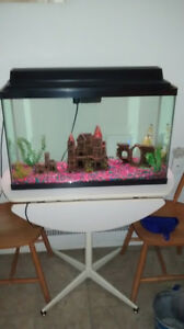 32 gallon fish tank