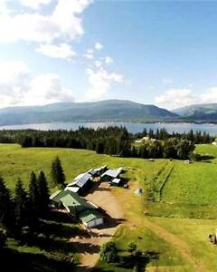 Shuswap Lakeview Country Home