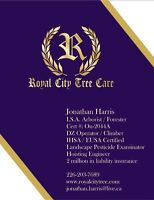Royal City Tree Care. Removal Pruning Pest Management Consulting