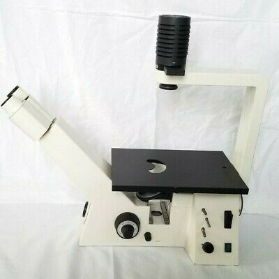 Zeiss Axiovert 25 Inverted Cfl Phase Contrast Microscope