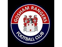 Gosham Rangers In Search For New Players For 16/17 Season Sunday League Adults Football Team