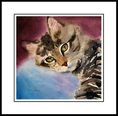 LOVE EYES - TABBY CAT ART FRAMED LIMITED EDITION PRINT DREW STROUBLE (Modified Cat Eye Frames)