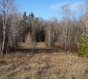 Lot for sale in Gore, Qc with lake access