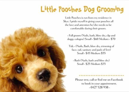 Little pooches dog grooming service carrum downs grooming little pooches dog grooming service carrum downs grooming gumtree australia frankston area skye 1140784439 solutioingenieria Images