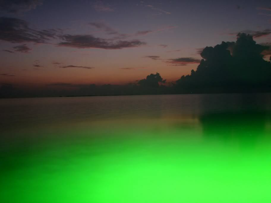 8 foot green fishing light - underwater submersible fish, Reel Combo