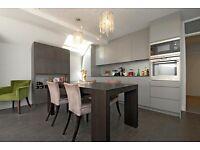 A stunning two double bedroom ground floor garden flat, Elbe Street, SW6