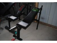 Adjustable Flat - Incline York Weights Bench with Leg Extension- Gym