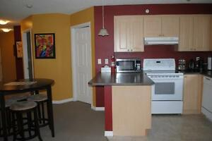 Beautiful new building, newly furnished 2 bed in south Edmonton