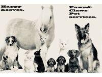 Petsitter/Dogwalker