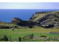 1 bedroom flat in Castle View, Cornwall, PL34 (1 bed)
