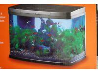 Panorama 40 litre aquarium