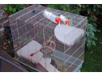 Large rat/ rodent cage for sale with toys, hammock, food bowl and food!