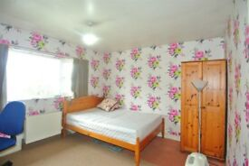 Amazing Room near Mile end Station. £118 per week. Price, Location & People!!!!