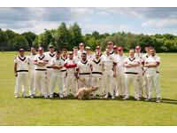 A great cricket club in South West London!
