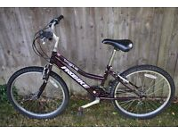 "Probike girl's bike - 24"" wheels - 18 gears"