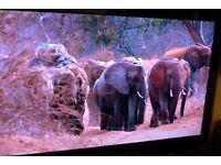 Samsung 40 inch LED HD Television
