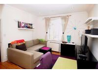 Lovely bright one bedroom flat with private terrace earls court