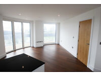 Three bedroom, two bathroom large luxury apartment in Docklands E16