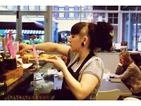 Café 'All-Rounder' at London Review Cake Shop