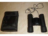 Folding binoculars 10 x 25