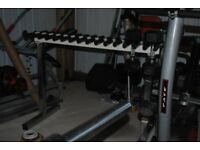 Vertical Hanging Dumbbell Rack - Weights Gym
