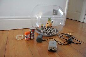 40 Ltr Fish Bowl, Pumps, Stones, Spongebob, Gary & Pineapple Figures With Goldfish Food