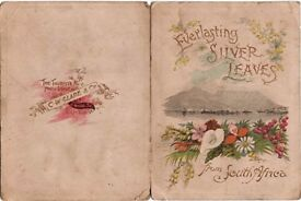 """Boer War era Souvenir Greetings Card """"Everlasting Silver Leaves from South Africa"""""""