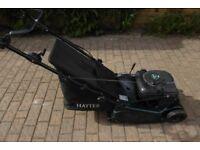Hayter Harrier 41 Auto Drive Lawn Mower