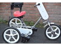childs disabled tricycle