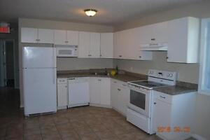 FURNISHED 5 BED STUDENT APTS * 1 MTH FREE * MAY or SEPT LEASE Kitchener / Waterloo Kitchener Area image 2
