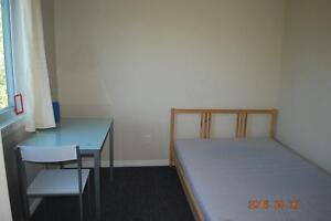 FURNISHED 5 BED STUDENT APTS * 1 MTH FREE * MAY or SEPT LEASE Kitchener / Waterloo Kitchener Area image 5