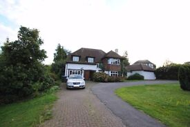 Beautiful four bedroom house with two bathrooms, front/rear garden with off street parking