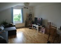 Two bed Victorian conversion, N16 Stoke Newington /Stamford Hill/ Manor house Quiet Leafy road