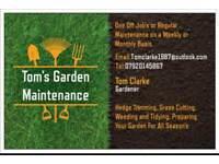 Tom's Garden Maintenance
