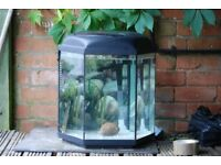Fish tank hexagonal 50cm high 45cm wide
