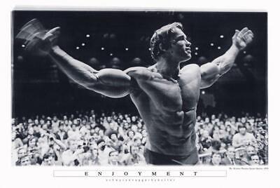 Arnold Schwarzenegger Poster Enjoyment 91,5 x 61 cm Plakat Wanddeko