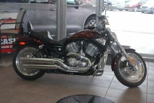 2004 Harley-Davidson HARLEY BASE  - Low Mileage