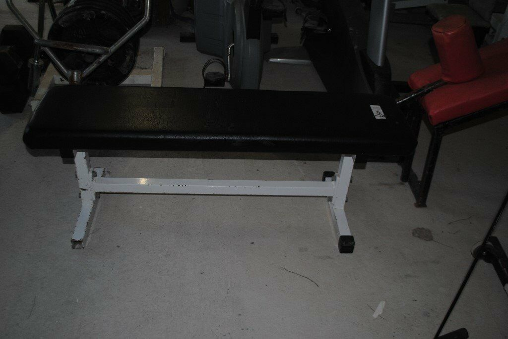 Commercial Grade Flat Dumbbell Weights Bench - Gym