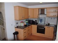 fitted kitchen with extractor, oven, hob and integrated dishwasher