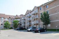 Beautiful 2 bdrom condo in Clareview! Underground parking & gym!