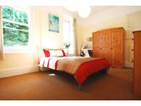 Elegant Room In a Renovated Flat - West Hampstead