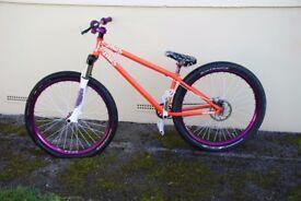 NS Majesty Custom Bike