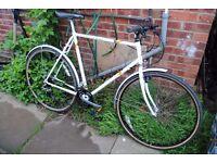 wanted,gents raleigh pioneer bike