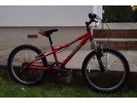 "Dawes Redtail 20"" Childs Bike"
