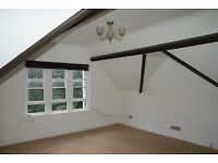 Attractive 2 bed attic flat in quiet, central location with roof terrace and parking