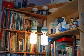 Hydroponics Growing Lamps With Fittings and Power Lead.