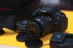 Canon Rebel T4i with 18-55 IS, 40mm STM lenses